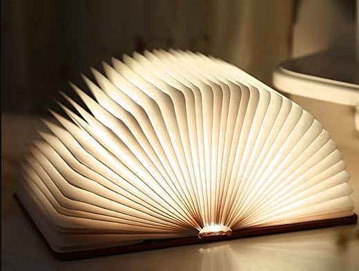 chung minh cau noi sach la ngon den bat diet - Chứng minh câu nói Sách là ngọn đèn bất diệt
